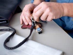 lego 854120 porta chaves rachel